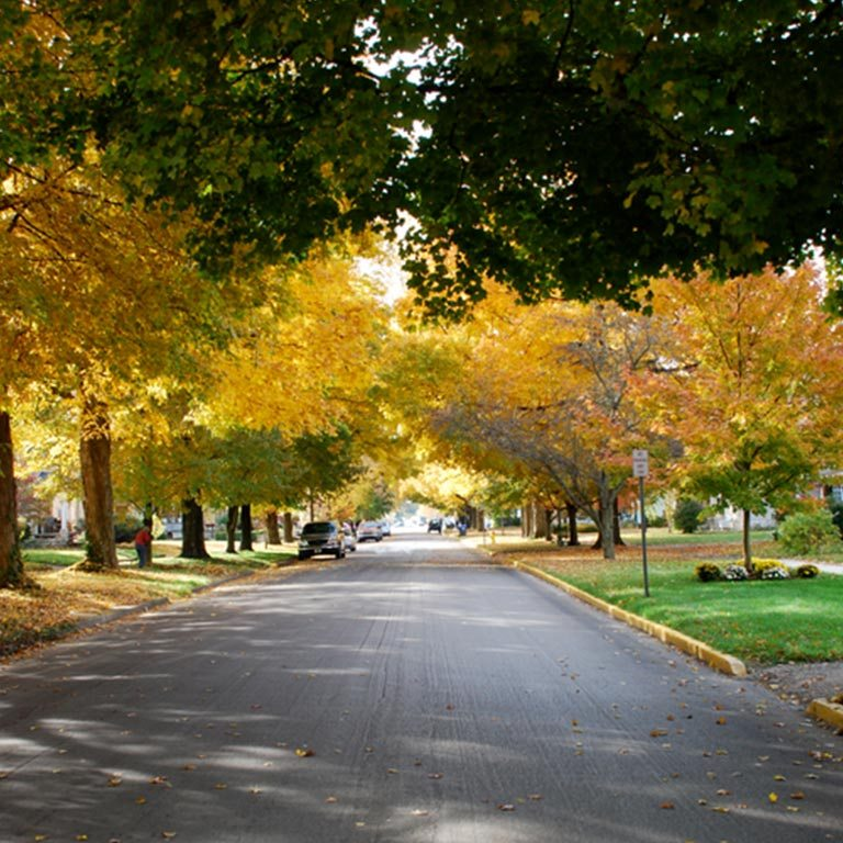 Autumn on an Owen County residential street